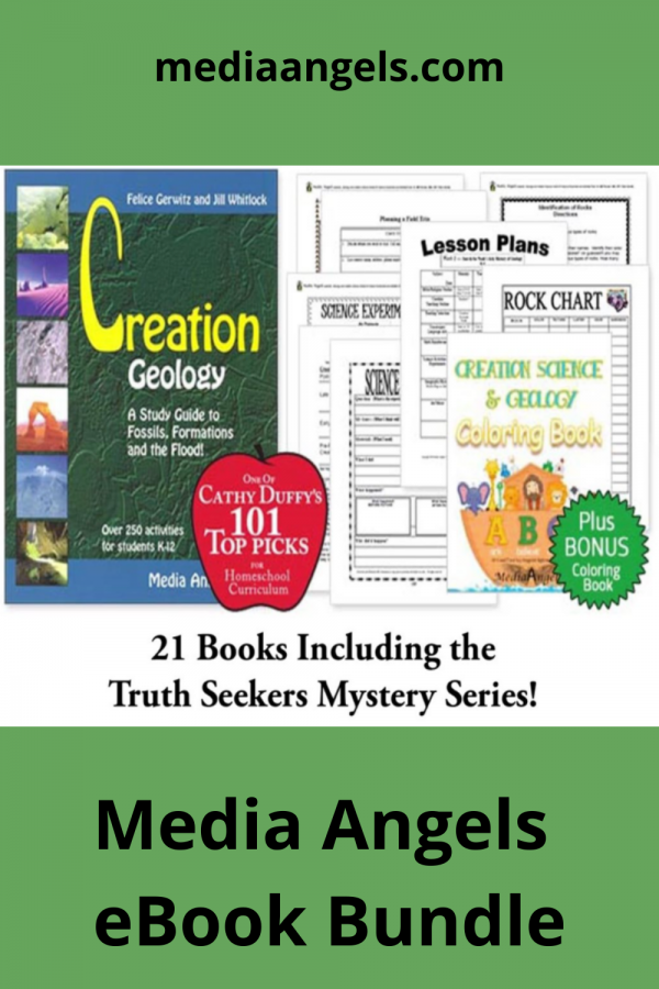 Take a moment to browse through all the eBooks now available on our eBook Bundle Membership level. All of these eBooks are available via PDF download to load on your computer or iPad. You receive 21 eBooks in this bundle, including many listed in Cathy Duffy's Top 100 and 101 Curriculum Picks for Homeschooling. The help you need now. Immediate access to quality Christian non-fiction and fiction books for your family.