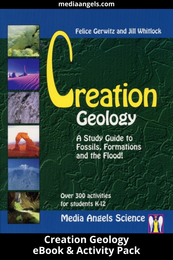 """What happens when a well and oil geologist becomes a Christian and a Creation Scientist? She finds the Lord, decides to homeschool, and writes a study guide! Okay it does not always happen in that order but when Jill Whitlock and Felice Gerwitz met, Jill opened a whole new world to Felice! The result is these study guides. This one especially is amazing since it is in Jill's area of expertise. This includes levels for K-4th Grade and 5th-8th Grade. Click Here forDetailed Class Information. """"Flood geology comes alive with the 57-page teaching outline included. Jill has outdone herself in this comprehensive guide. This study includes easy to follow lesson plans for K-12, over 300 activities and experiments, information about radiometric dating, oil and coal formation and Geologic formations and fossils occurred during the time of Noah's Flood, vocabulary list, recommended reading (not necessary to complete this study), math activities, book reviews, reproducible sheets and much more!""""– Cathy Duffy, author Christian Home Educators' Manuals"""